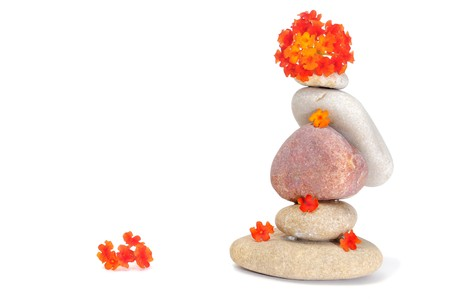 zen stones and flowers on a white background photo