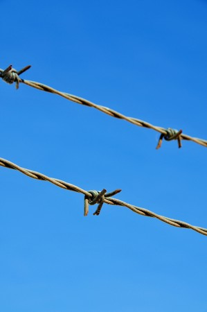 prisoner of war: closeup of a barbed wire over the blue sky