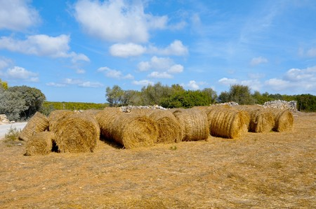 a pile of straw bales in a field after harvesting Stock Photo - 7862299
