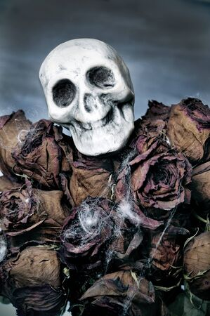decadence: closeup of a dried roses bouquet with a skull for Halloween