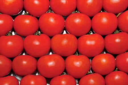 a pile of tomatoes ready to sell in a market place photo