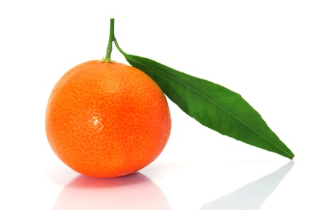 closeup of a tangerine isolated on a white background photo