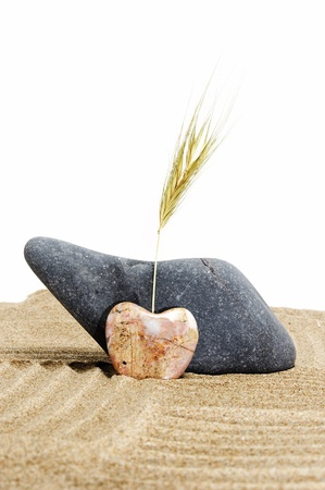spirituality therapy: zen stones, one heart shapped, on a zen garden in a white background Stock Photo