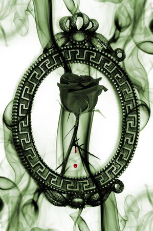 roses and blood: a black rose into a vintage frame with blood and smoke