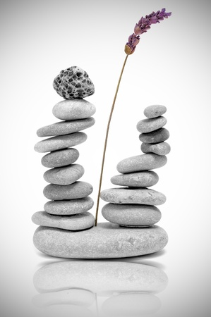 piles of zen stones with lavender on a white background photo