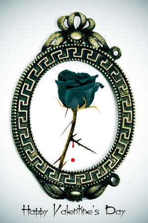 happy valentines day written with an oval frame and a black rose Stock Photo - 8755517