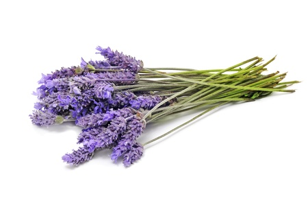 a bunch of lavender flowers on a white background Stock Photo