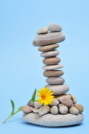 a pile of zen stones and flower on a blue background Stock Photo - 9104354
