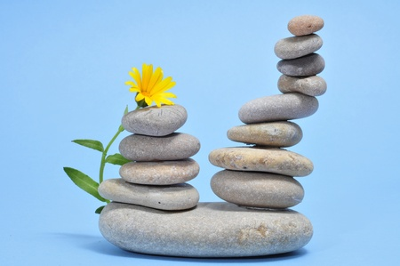 a pile of zen stones and flower on a blue background Stock Photo - 9104370