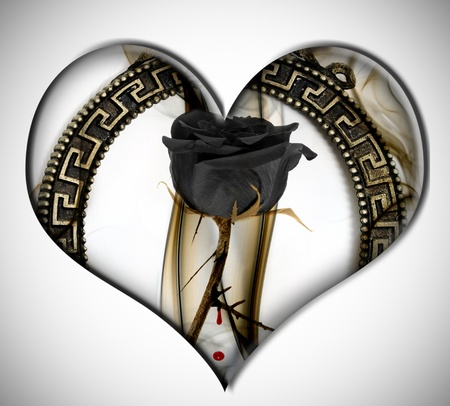 roses and blood: a black rose inside a heart on a white background