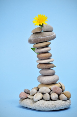 a pile of zen stones and a flower on a blue background Stock Photo - 9421737