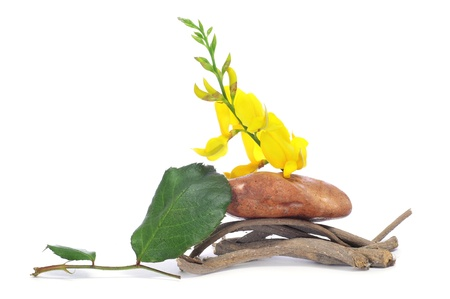 a pile of stone, branches and flowers Stock Photo - 9527370