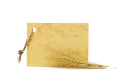 a stem here: barley spike with a blank paper label on a white background
