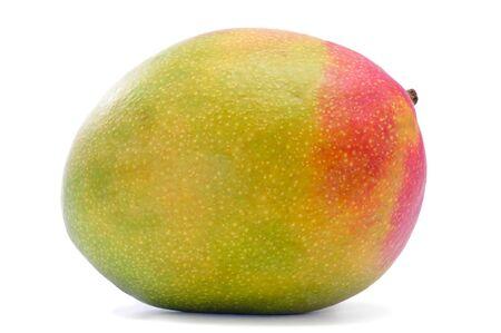 mango fruta: un fruto de mango, sobre un fondo blanco