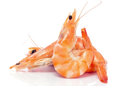 gamba: Algunos camarones sobre un fondo blanco