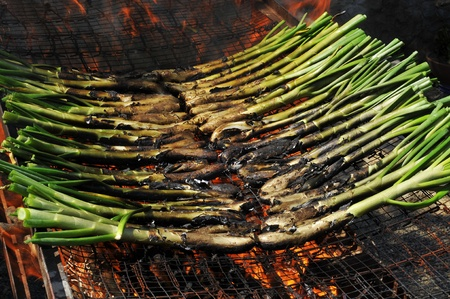 calsotada: a bunch of calcots, typical catalan sweet onions, on the barbecue Stock Photo