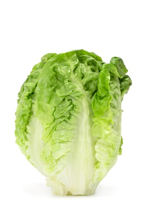 a lettuce heart on a white background Stock Photo - 9729096