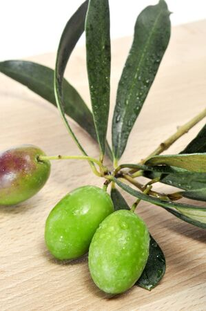 closeup of an olive bunch with green olives photo