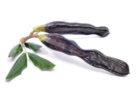 carob: a pair of ripe carobs on a white background Stock Photo