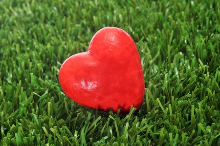 infarct: closeup of a red heart on the grass