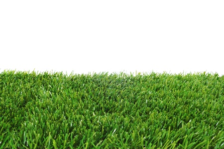 closeup of grass on a white background Stock Photo - 10453744