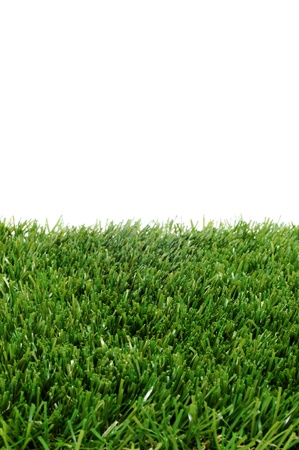 closeup of grass on a white background Stock Photo - 10490578