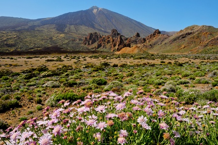stratovolcano: A view of volcano Mount Teide, in Teide National Park, in Tenerife, the highest elevation in Spain Stock Photo