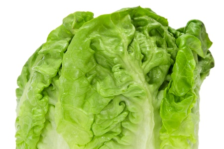 romaine: a lettuce heart on a white background
