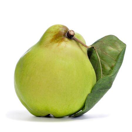 membrillo: una fruta de membrillo sobre un fondo blanco