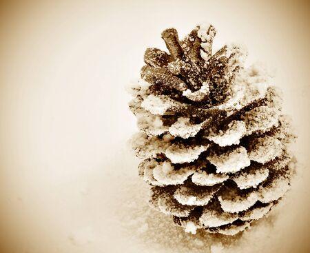 pomme de pin: une pomme de pin sur la neige avec un style vintage Banque d'images