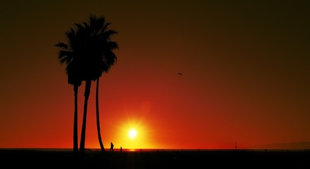 los angeles county: sunset on Venice Beach, Venice, California, United States