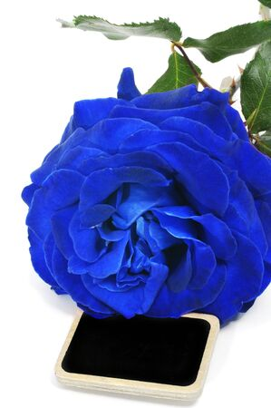 broaching: a blue rose with a blank blackboard label on a white background