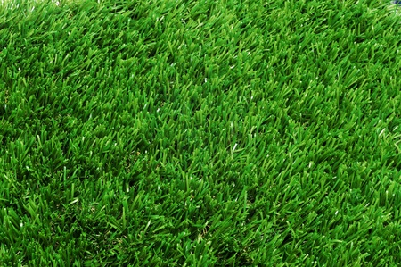 background made of closeup of grass Stock Photo - 11549622