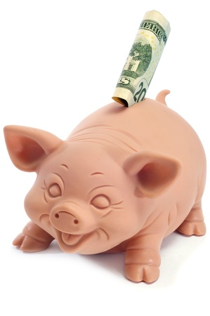 a piggy bank with a 20 dollar banknote photo