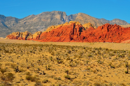 nevada: sandstone landscape in Red Rock Canyon National Conservation Area, Nevada, United States
