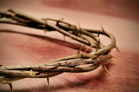 viacrucis: closeup of a representation of the Jesus Christ crown of thorns Stock Photo