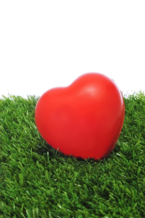 a red heart on the grass Stock Photo - 12211099