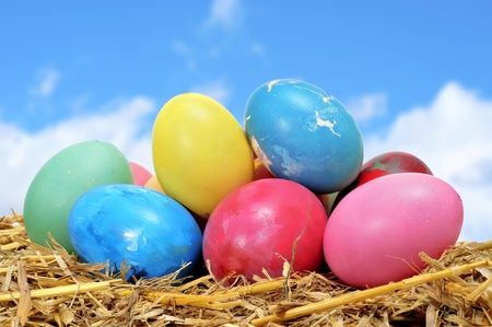 some easter eggs of different colors on straw Stock Photo - 12553890