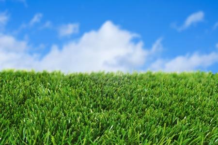 pasto sintetico: primer plano de hierba sobre el cielo azul