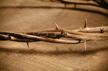 golgotha: closeup of a representation of the Jesus Christ crown of thorns Stock Photo