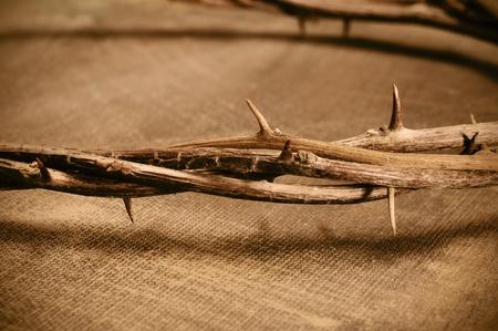 corona de espinas: Primer plano de una representación de la corona de espinas de Jesucristo Foto de archivo