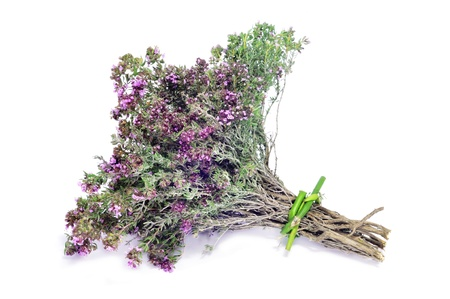 rosemary flower: a bunch of rosemary on a white background Stock Photo