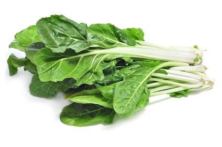 chard leaves on a white background photo