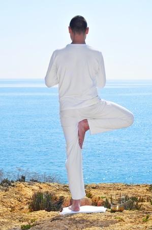 yogi: a yogi practicing the yoga tree pose