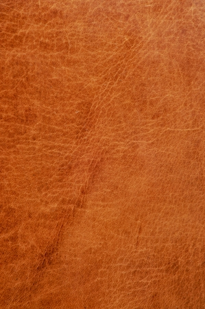 background made of a closeup of a leather texture photo