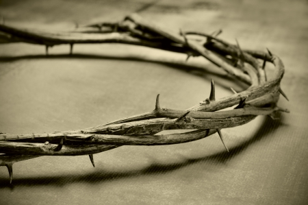 jesus christ crown of thorns: closeup of a representation of the Jesus Christ crown of thorns Stock Photo