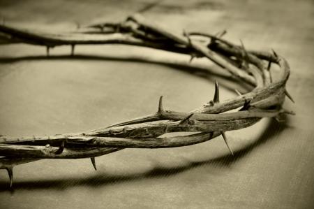 �pines: Gros plan sur une repr�sentation de la couronne d'�pines de J�sus-Christ Banque d'images