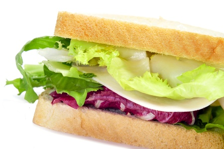 closeup of a sandwich filled with vegetables and turkey photo