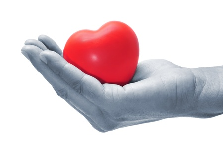 a hand holding a red heart on a white background photo