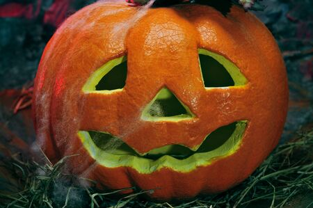 dismal: closeup of a Halloween jack-o-lantern in a dismal scenery